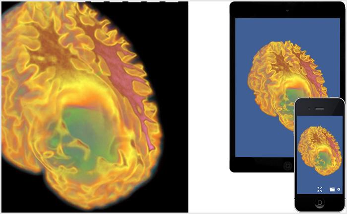 Example of cross-platform Interactive Application